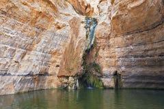 Vieux lac mince Image libre de droits