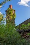 Vieux, le lierre a couvert la cheminée Photo stock