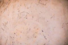 vieux lether grunge avec la fente utilisée comme le fond image libre de droits