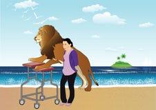 Vieux lion Image stock