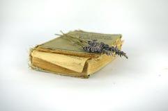 Vieux livre étroit Images stock