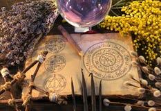 Vieux livre avec le diagramme, le pentagone étoilé, la boule de cristal et les herbes wiccan de vacances photos stock