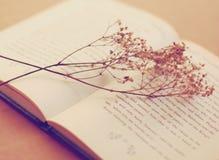 Vieux livre avec les fleurs sèches Image libre de droits