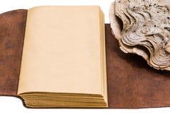 Vieux livre en cuir ouvert d'isolement sur le fond blanc Image libre de droits