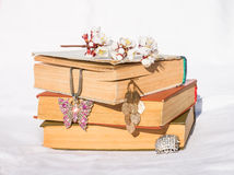 Vieux livres photo libre de droits