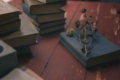 Vieux livres de cru sur une table en bois rouge et une fleur sèche photo stock