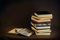 Vieux livres et crayon lecteur Images libres de droits