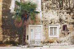 Vieux maison et palmier Photographie stock libre de droits