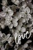 Vieux milieux de fleur de vintage - photos de style d'effet de vintage Photo stock