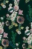 Vieux milieux de fleur de vintage - photos de style d'effet de vintage illustration stock