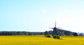 Vieux moulin dans le domaine de colza oléagineux Photos libres de droits