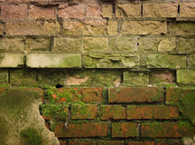 Vieux mur images libres de droits