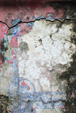 Vieux mur avec le moule Photos libres de droits