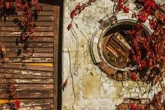 Vieux mur avec une porte et feuilles des raisins, fond Photographie stock