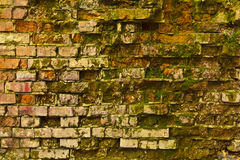 Vieux mur de briques Images stock