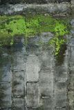 Vieux mur de briques abstrait Image libre de droits