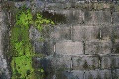 Vieux mur de briques abstrait Photo libre de droits