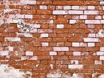 Vieux mur de briques couvert dans le rose photographie stock