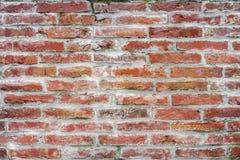 Vieux mur de briques de fond photos libres de droits