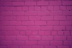 Vieux mur de briques fraîchement peint dans la couleur pourpre Images libres de droits