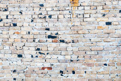 Vieux mur de briques souillé, fond Images stock