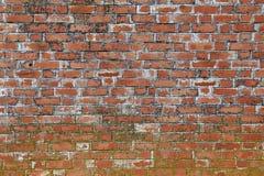 Vieux mur de briques superficiel par les agents Photographie stock libre de droits