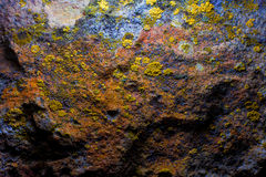 Vieux mur de caverne avec le moule et la mousse Photo stock