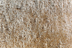 Vieux mur de texture avec les modèles géographiques Photos libres de droits