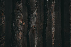 Vieux mur en bois foncé Photo libre de droits