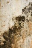Vieux mur grunge de texture Photos stock
