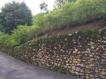 Vieux mur moussu de roche en Costa Rica Photos libres de droits