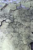 Vieux mur. Texture Images stock