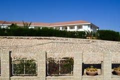 Vieux mur texturisé des pierres brunes et briques de différentes formes avec les plantes vertes et les pots avec des cactus contr image libre de droits