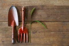 Vieux outils de jardinage rouillés grunges sales avec la fleur et la feuille d'herbe sur le fond en bois grunge sale Photographie stock libre de droits