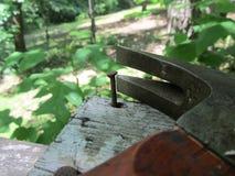 Vieux panneau de marteau et de clous Photo libre de droits