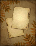 Vieux papier avec des lames d'automne Photos stock