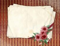 Vieux papier avec le chrysanthemum Image stock