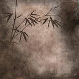 Vieux papier avec les branchements en bambou Photo libre de droits