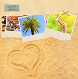Vieux papier, photos de voyage et étoiles de mer Photos libres de droits