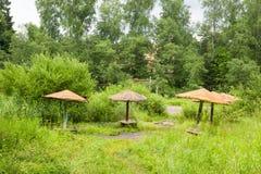 Vieux parasols en bois parmi l'herbe grande Images stock