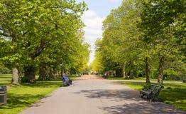 Vieux parc anglais au sud de Londres Photos stock