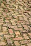 Vieux passage couvert et herbe de brique photographie stock libre de droits
