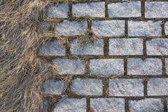 Vieux pavé avec l'herbe sèche abrégez le fond Images stock