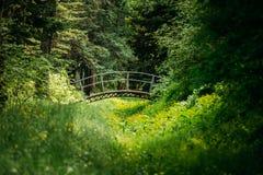 Vieux petit pont décoratif dans la forêt de parc de jardin d'été images libres de droits