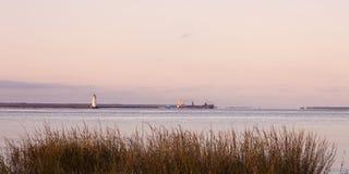 Vieux phare à l'île de Cockspur Images stock