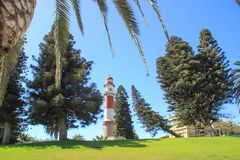 """Vieux phare rouge et blanc allemand, qui s'appelle le """"lard """"entouré par des palmiers images libres de droits"""