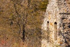 Vieux pignon et arbre de cloche face à face Photos libres de droits