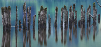 Vieux pilier Photo libre de droits