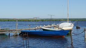 Vieux pilier pour des bateaux de pêche banque de vidéos