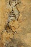 Vieux plâtre superficiel par les agents Photos libres de droits